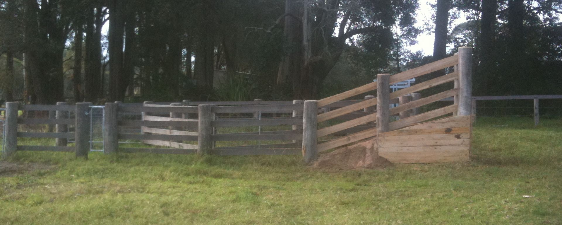 Cattle loading ramp and complete set of cattle yards